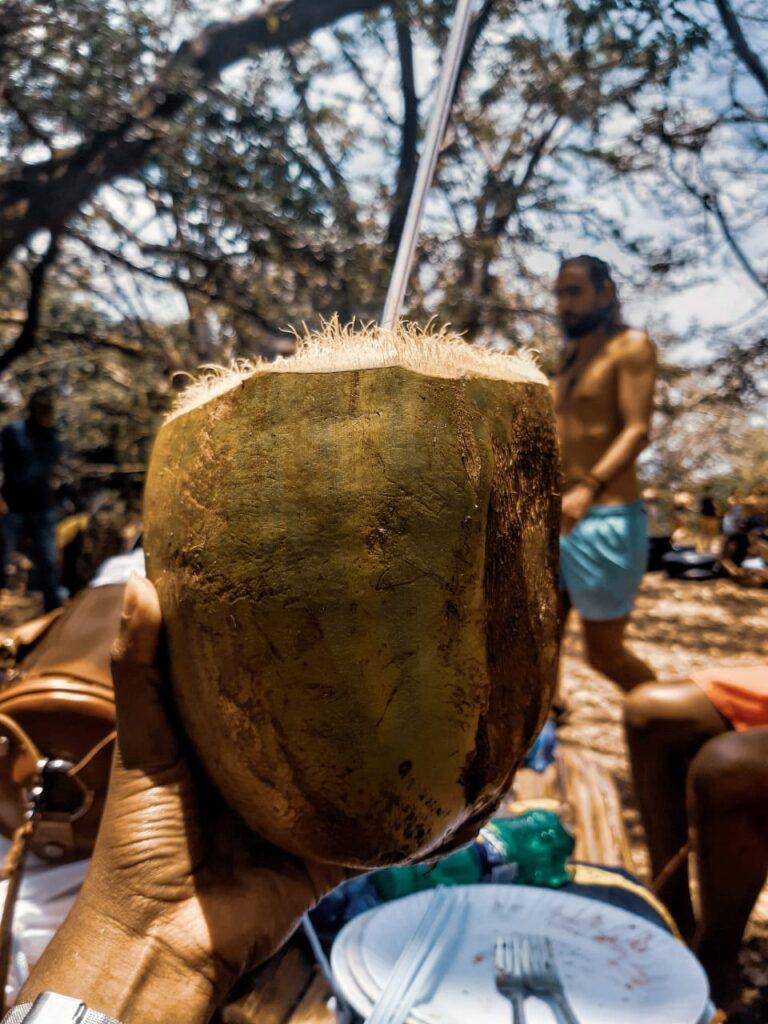 Dafu with straw at Kikuletwa Hot Springs